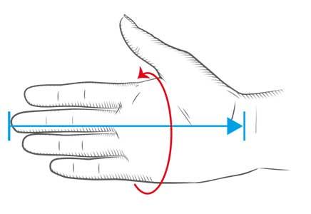 Size chart hand